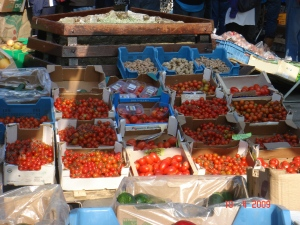 Vine, cherry, roma, beefsteak varieties